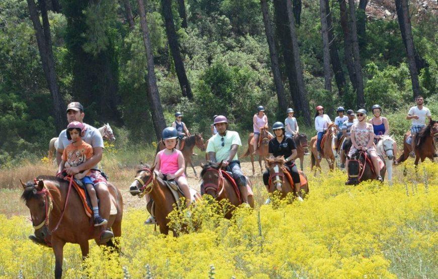 Paarden Safari Vanuit Marmaris