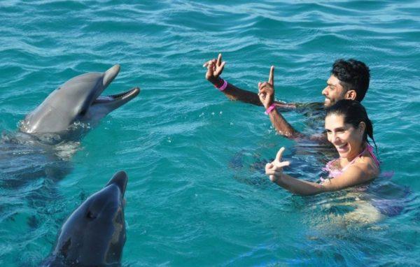 Zwem met Dolfijnen in Marmaris icmeler