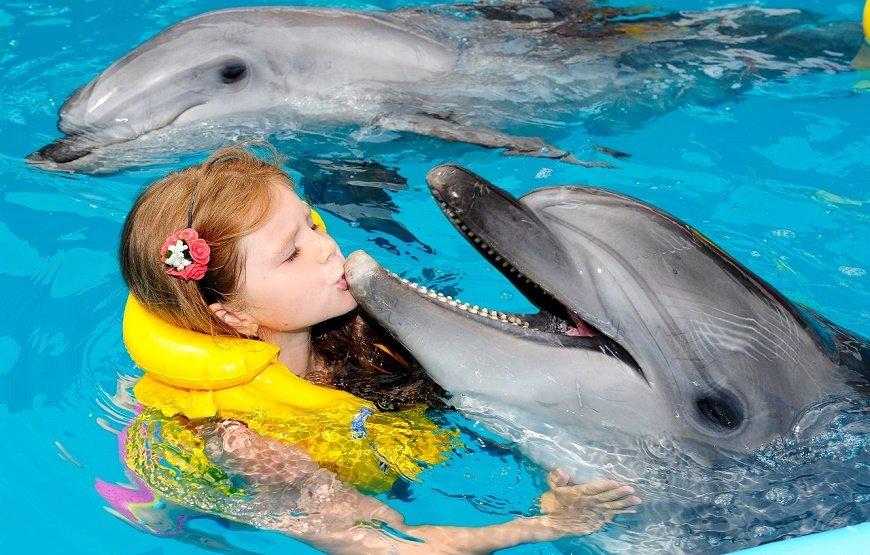 Zwem met Dolfijnen in Marmaris