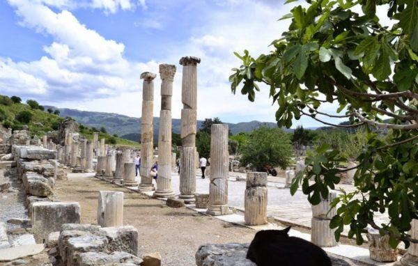 Vanuit Marmaris naar Efeze Reizen