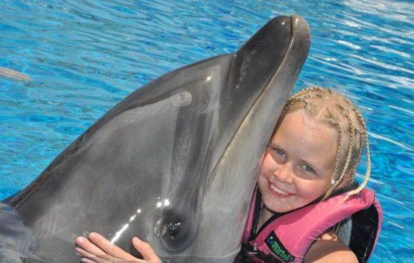 Ontmoet Dolfijnen in Marmaris